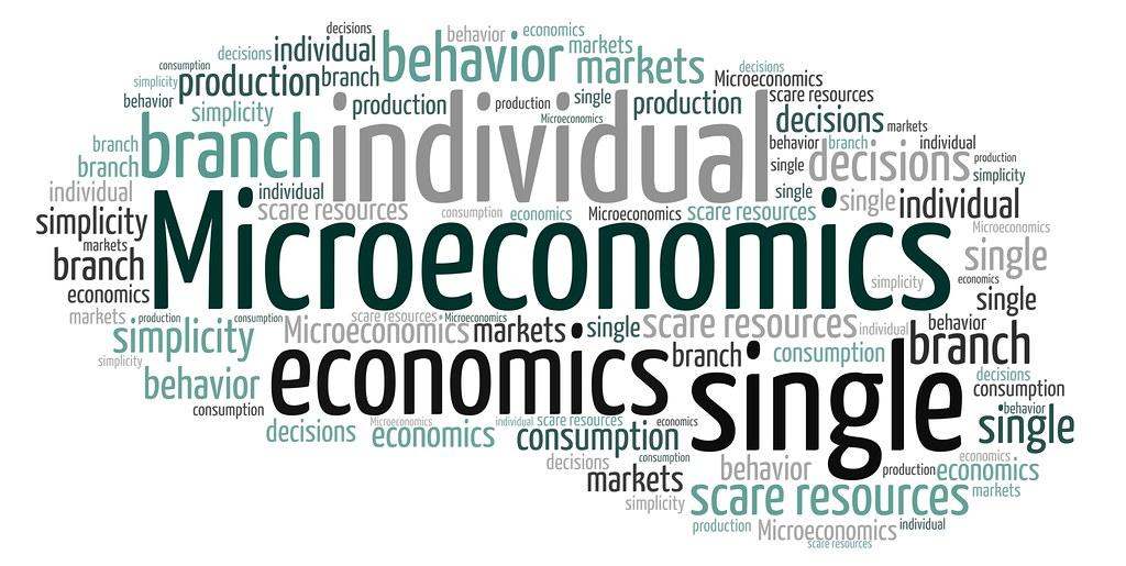 Mengenal Ekonomi Mikro